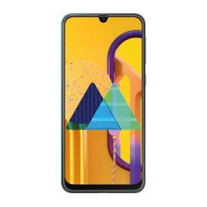Samsung Galaxy M30S LCD